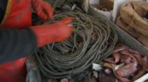 men attach bait to hooks, longlining for halibut and black cod alaska