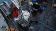 Men On Fishing Boat Use Cranes To Move Catch, Longlining For Halibut And Black Cod Alaska