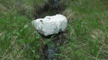 Marine Debris And Plastic Trash On Remote Alaska Beaches