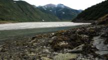 Brown Bear Habitat And Scenics Of Katmai Alaska - Pan Over Beautiful Tidal Flats And Kelp At Base Of Mountains, Afternoon Light