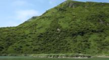 Scenic Shot Of Alaska Peninsula Shoreline - Brilliant Green Alder Covered Mountainside, View From A Skiff