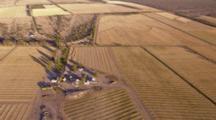 Aerial Over Crops, Farmland