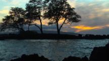 Sunset Silhouettes Trees On Rugged Coast