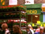 Flower Cart Pushed Through Market