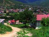 Marijuana Field Above Bhutan Village