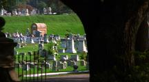 Slow Pan Of Cemetery, Framed By Trees In The Foreground