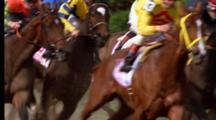 Horse Race Stock Footage