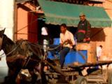 Men Drive Donkey Cart Through Town