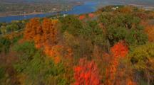 Aerial Trees In Fall Color