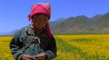 Asian Girl And A Field Of Mustard