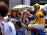 Jockey Enters Track On Horse Through Spectators