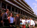 Spectator At Kentucky Derby