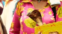 Woman Holds Cobra In Basket