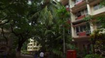 Tree-Lined Street With Auto Rickshaws