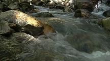 Creek Flows Over Boulders, Big Sur