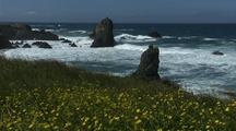 Rugged Coast With Waves Crashing And Flower Foreground