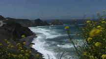 Big Sur Ocean Stock Footage