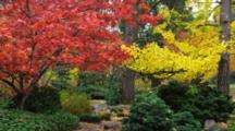 Panorama Of Garden With Trees With Red And Yellow Fall Colors