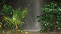 Rain, Waterfall Hits Forest Floor, Hawaii