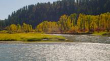 Flowing River And Fall Trees Near Grand Teton Park