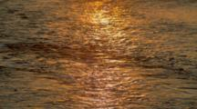 Sunrise Reflected On Steaming River