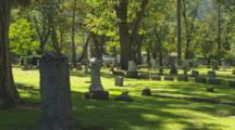 Grave Yard With Deer In Ashland, Oregon