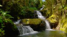 Cascading Onomea Falls Near Hilo
