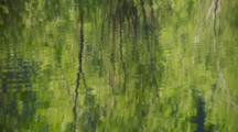 Trees Reflected In Rippling River