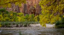 Fall Colors And Virgin River At Temple Of Sinawava