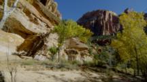 Sandstone Landscape And Autumn Trees