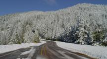 Road Through Snow Covered Forest, Mt Ashland, Oregon