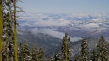 Snow Covered Forest, Mountains In Distance, Mt Ashland, Oregon