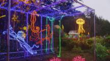 Christmas Light Show Features Ocean Life In Coos Bay, Oregon