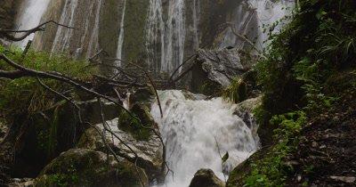 Tilt Down Cascading Waterfall in Forest
