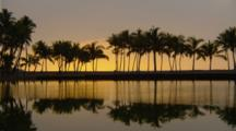 Line Of Palm Trees Silhouetted By Sunset Reflected In Water