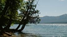Sun Sparkles On Lake, Trees On Shore, Possibly Lake Mcdonald, Glacier National Park