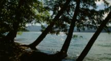 Sun Sparkles On Lake Between Trees On Shore Of Lake, Possibly Mcdonald, Glacier National Park