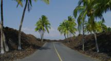 Hawaiian Road Lined With Lava Field And Palm Trees