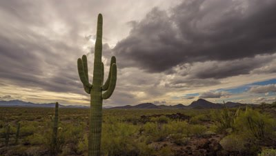 Time lapse of clouds passing over Organ Pipe Cactus National Monument, Arizona
