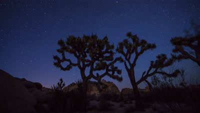 Time lapse of the stars at Joshua Tree National Park, California at night