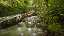 Time Lapse, Track Over Stream In Lithia Park, Ashland, Oregon