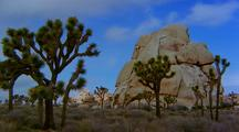 Time Lapse At Joshua Tree National Park