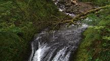 Creek And Waterfall, Columbia River Gorge