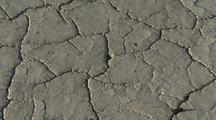 Dry, Cracked Earth, Possibly Lake Bottom