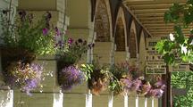 Storefront Flowers, Downtown Ashland Oregon
