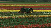 Farming Scenic Stock Footage