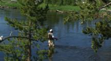 Man Fly Fishing In Yellowstone