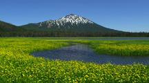 Spark's Lake With Mountain Backdrop And Yellow Flowers