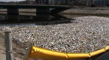 Boom Used To Contain Trash Collected In Los Angeles River System
