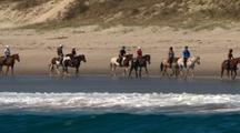 Sport Stock Footage with Horses
